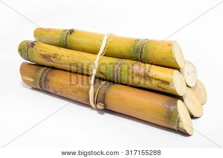 Sugar Cane, Brazilian, Cane, Piece Of Cane, Fresh, Sugar Cane, White, Background, Cane, Fresh. Plant