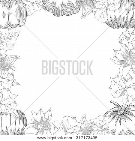 Pumpkin Frame Vector Drawing Set. Isolated Hand Drawn Object With Sliced And Leaves.