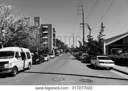 Palo Alto, California/usa - 03.30.2018: The Spring On A Street Of Palo Alto City. No People.