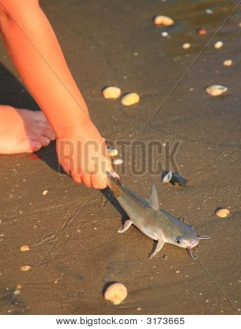 Goa Beach  8