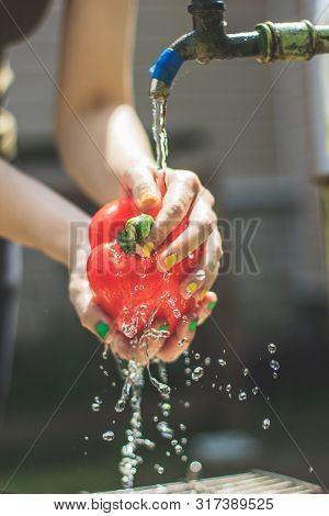 Womans Hands Wash Red Paprika. Paprika Under Flow Of Water. Ingredient For Vegetarian Salad. Vegetab
