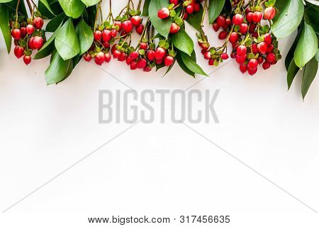 Summer Frame With Green Plants And Red Berries On White Background Top View Mockup