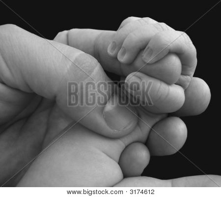 Baby Hand On Finger Black And White