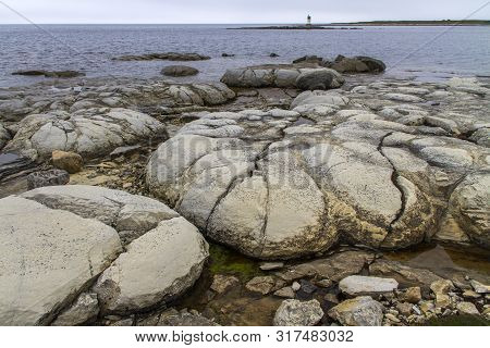 Ancient Thrombolite Formations Along Newfoundland Seacoast At Flowers Cove