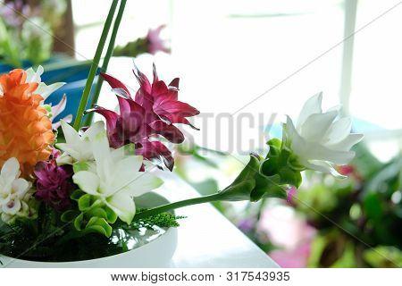 Siam Tulip Flower Arrangement In Japanese Ikebana
