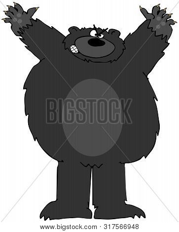 Illustration Of An Aggressive Black Bear Standing On Its Hind Legs.