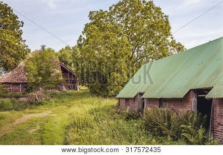 Old And Dilapidated Barns Among Wild Plants And Shrubs. The Photo Was Taken On A Sunny Day In The Mi