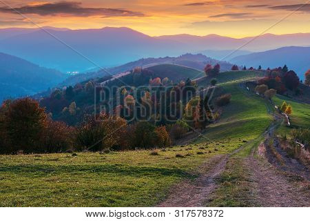Mountain Countryside At Dusk. Beautiful Autumn Scenery. Trees Along The Path Through Hilly Rural Are