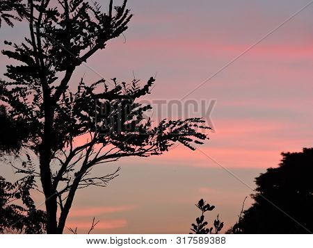 Natural environment. Sunset in nature. Travel in nature. poster