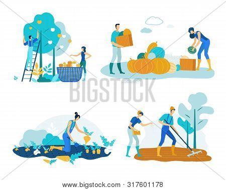 Set Farm Work Harvesting Vector Illustration. People Harvest Apples And Pumpkins In Baskets And Crat