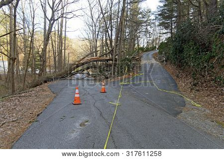 A Road Splits: The Low Road Is Blocked By A Fallen Tree And The High Road Is Covered In Yelow Tape W