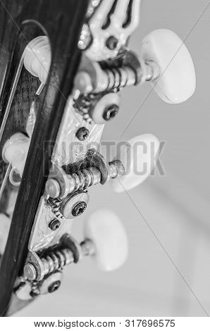 Tuning Pegs On The Headstock Of An Acoustic Guitar. Focus On The Gears. Black And White Photo.