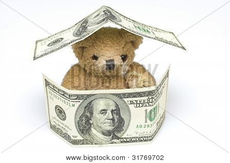 teddy bear inside money house
