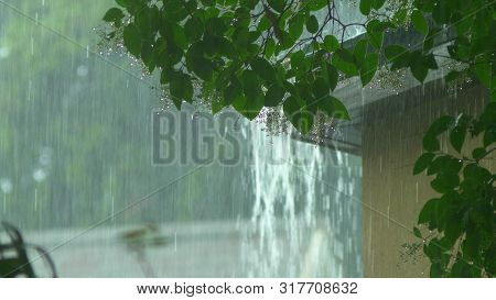 Rain Flows From A House Roof Into A Gutter During Rain. Close-up