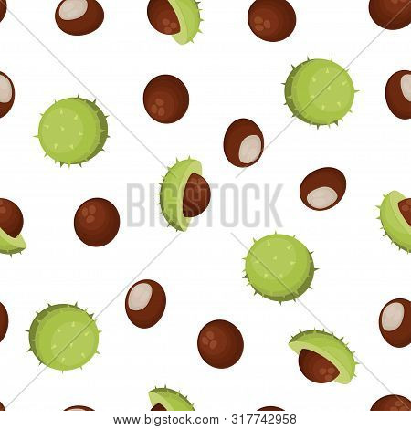 Seamless Pattern With Fruits Of Chestnut, Background Of Chesnut Peeled And Whole Horse Chestnuts Dra