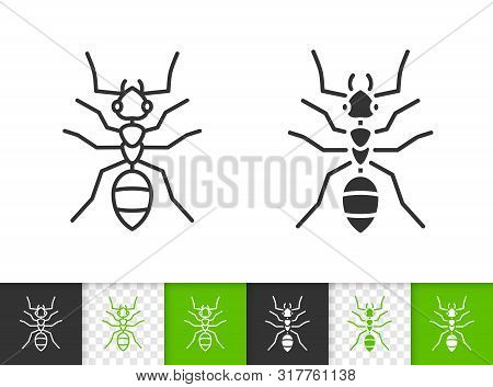 Ant Black Linear And Silhouette Icons. Thin Line Sign Of Insect. Animal Outline Pictogram Isolated O