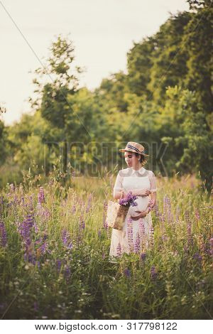 Pregnant Woman In White Dress Holding A Straw Basket With Wildflowers In Lupine Field. Provence