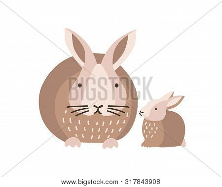 Bunny Or Rabbit With Baby Isolated On White Background. Lovely Family Of Cute Funny Wild Forest Anim