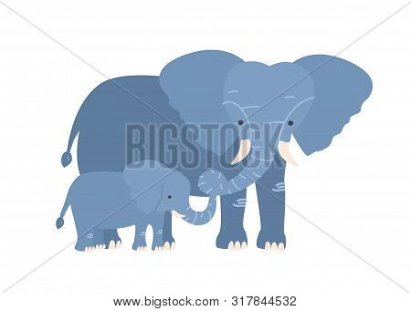 Elephant With Calf Isolated On White Background. Family Of Wild African Savannah Herbivorous Animals