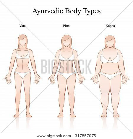 Female Body Constitution Types - Ayurvedic Typology - Vata, Pitta, Kapha. Isolated Outline Vector Il