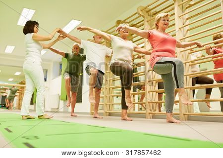 Physiotherapist supervises seniors group in gymnastics course with exercise on the wall bars