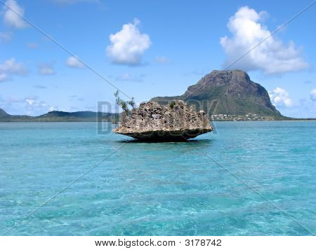 Tropical Water Mauritius