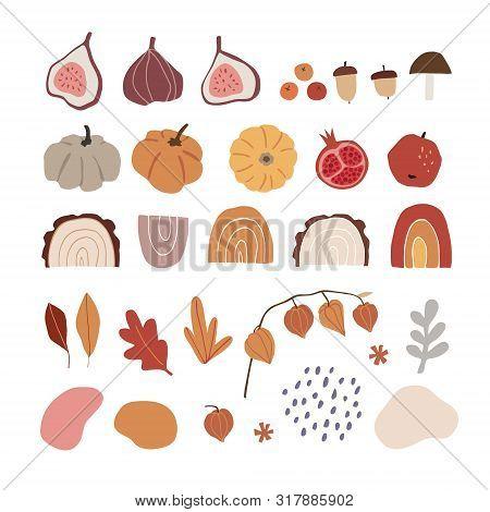 Set Of Modern Abstract Hand-drawn Autumn Elements. Apple, Fig Fruit, Pumpkins, Acorns, Rainbows, Phy
