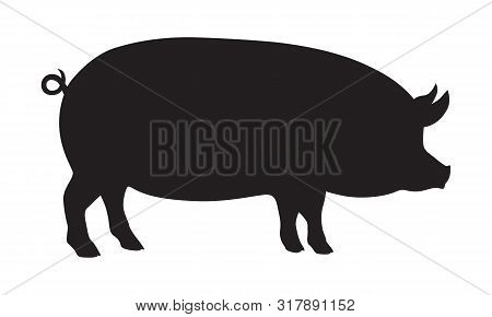 Pig graphic sign. Pig black silhouette isolated on white background. Vector illustration