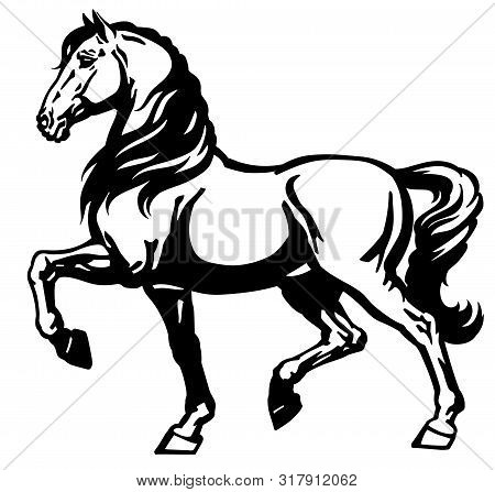 Heavy Draft Horse Side View. Black And White Vector