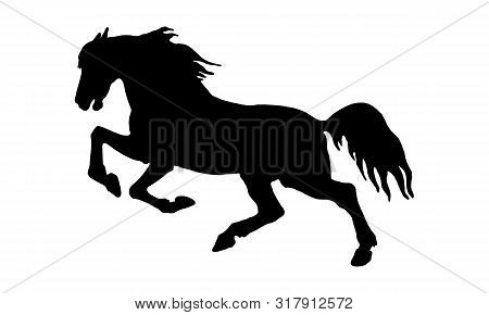 Vector Isolated Image, Drawing, Black Silhouette, Galloping Horse On White Background