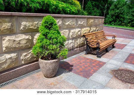 a stone flowerpot with an evergreen tree near a wooden bench and a stone wall with a rustication in the park with a pedestrian sidewalk made of stone and granite tiles and green plants. poster