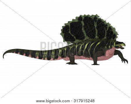 Edaphosaurus Dinosaur Side Profile 3d Illustration - Edaphosaurus Was A Sailback Carnivorous Dinosau