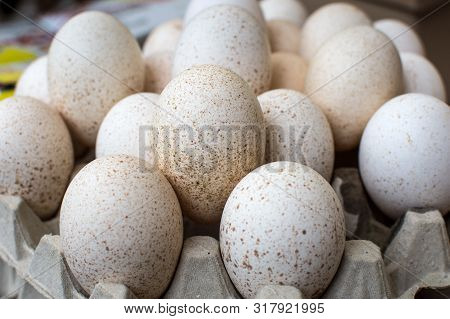 Large Pile Of Speckled Eggs In Carton