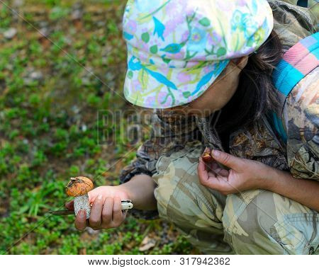 Girl tourist Asian mushroom collector in Yakutia with a knife in his hand checks found a mushroom in the forest against the grass. poster