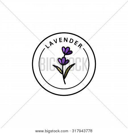 Lavender Logo Lavender In Trendy Linear Style. Vector Herbal Organic Lavender Icon Of Packaging Desi
