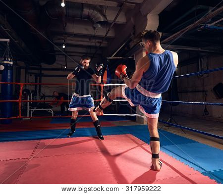 Two Muscular Sportsmen Kickboxers Practicing Kickboxing In The Ring At The Sport Club