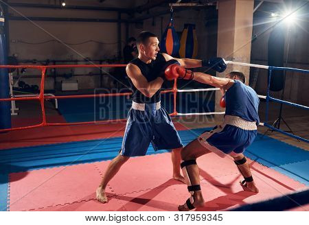 Two Handsome Men Boxers Fighting In The Ring At The Health Club
