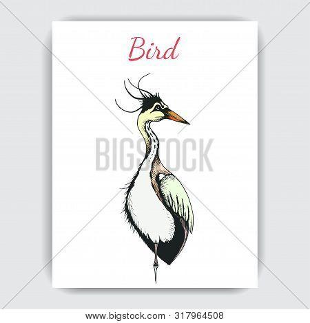 Sketch Hand Drawn Card With Heron. Animals Illustration Birds.