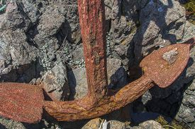Large Old Rusty Anchor On Rocks, Newfoundland