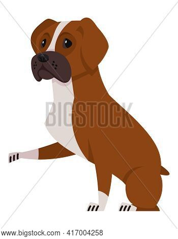 Boxer Dog Giving Paw. Beautiful Pet In Cartoon Style.