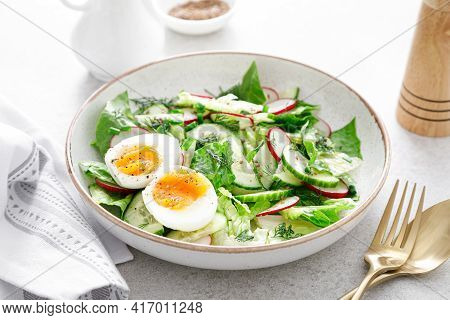 Salad With Radish, Cucumber, Romaine Lettuce, Greens And Boiled Egg. Breakfast. Healthy And Detox Fo