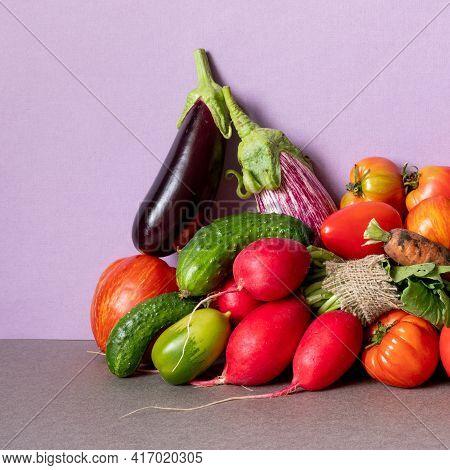 Healthy Vegetarian Food Organic Vegetables Still Life Concept. Farm Aubergine Eggplants, Tomatoes Of