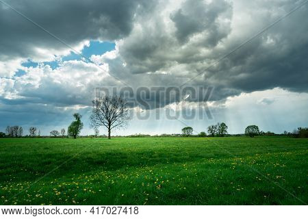 Green Meadow And Yellow Flowers, Dark Clouds And Sunbeams