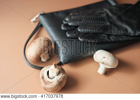 Handbag And Gloves Made Of Mycelium Leather, Bio Sustainable Alternative To Leather Made Of Mushroom