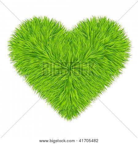 Green grass heart. Vector. 10eps
