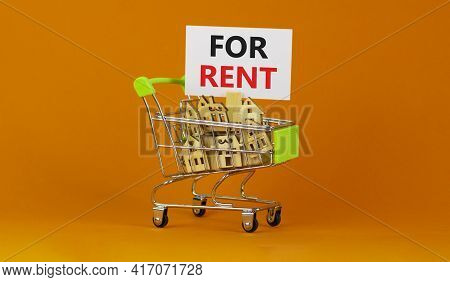 Real Estate For Rent Symbol. Miniature Shopping Cart With Wooden Houses, Words For Rent. Beautiful O