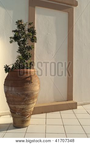 Greek Amphora With Olive Tree