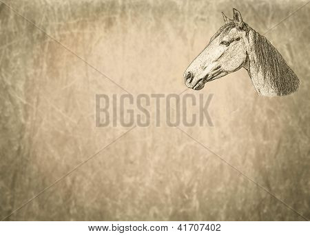 Large Sepia Toned Horse Portrait on Textured Blank Text Page poster