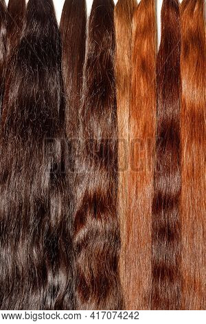 Natural Shiny Healthy Dark Chocolate Human Hair Bundles For Hair Extensions Wigs. Vertical Image, Cl