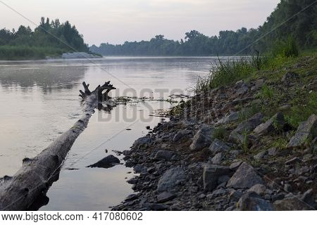 The Trunk Of The Tree Lies On The Bank Of The River. A Fallen Tree Trunk Lying In The River. Nature